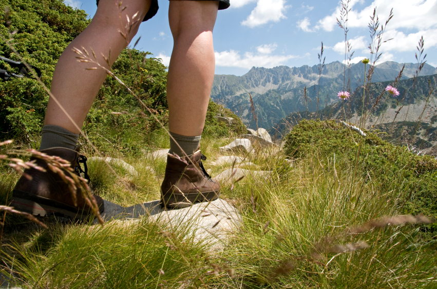 Hiking Trails Bohinj